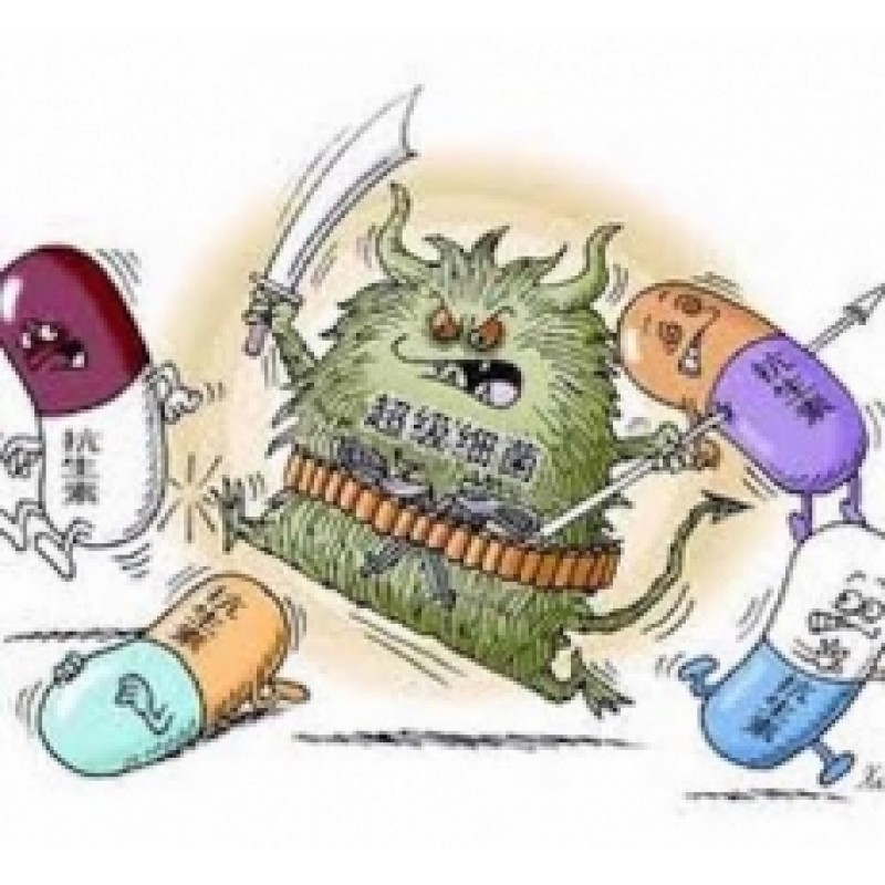 細菌5分鐘快速鑑定(泌尿道發炎&洗腎病人)
