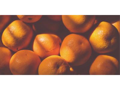 【微光譜應用】基於可見近紅外光譜的線上水果分選檢測應用