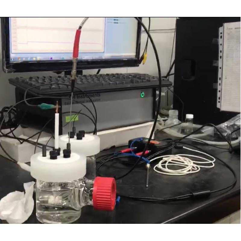 neofox 實驗影片